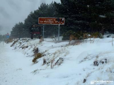 Cerro Perdiguera-Cuerda Vaqueriza; selva irati navarra rutas senderismo la pedriza picos de europa r